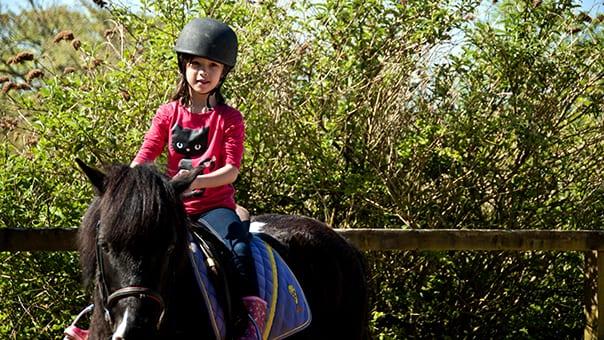 Broomhill Manor Riding