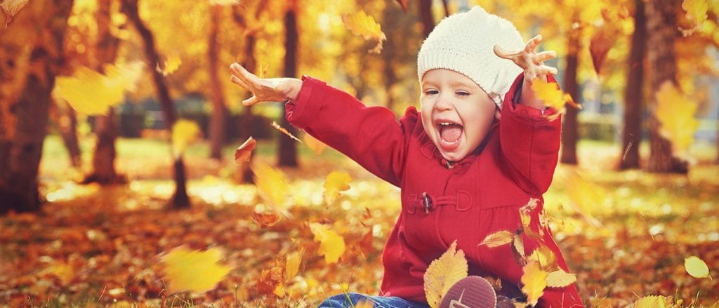 Toddler Friendly Holidays at Broomhill Manor