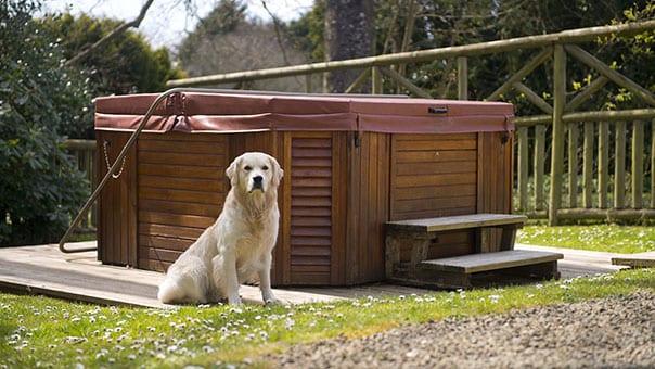 Broomhill Manor Dog Friendly Holidays