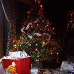 Christmas Tree at Broomhill Manor