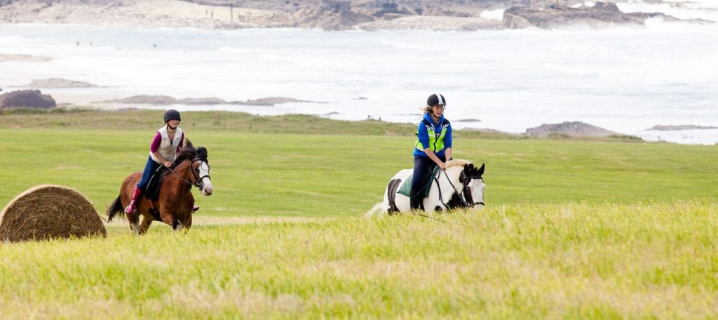 Broomhill Manor Horse Riding For All Ages and Abilities