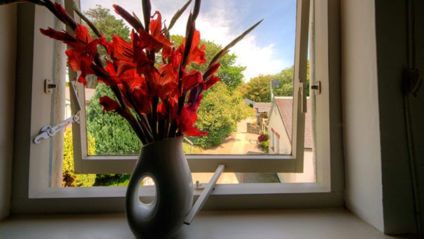 Photo of view from window in Fulmar Cottage