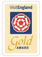 VE Gold Award
